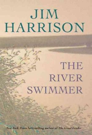 The River Swimmer: Novellas New Arrivals